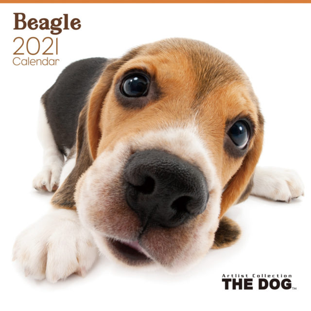 THE DOG 2021 Calendars Are Now Available