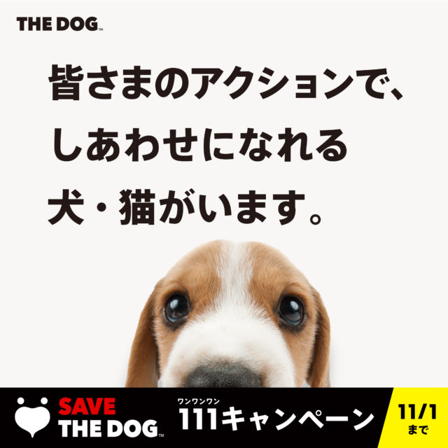 SAVE THE DOG PROJECT 111キャンペーン開催!